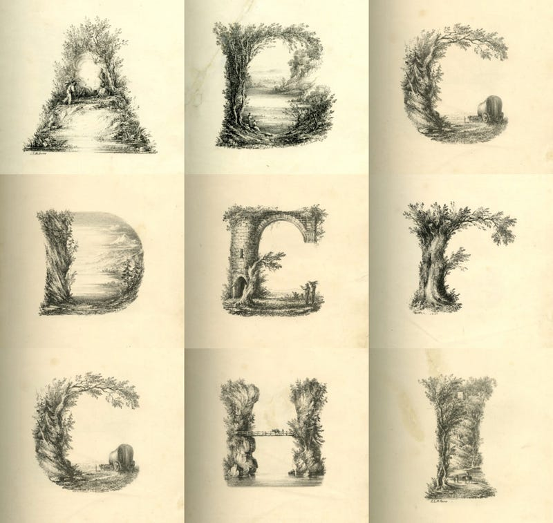 You've never seen the ABCs look this bizarre and wonderful