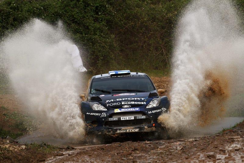 WRC Fan Survey