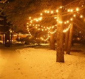 Display Outdoor Christmas Lights Safely