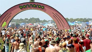 Concertgoers Dropped Like Flies at Bonnaroo This Year