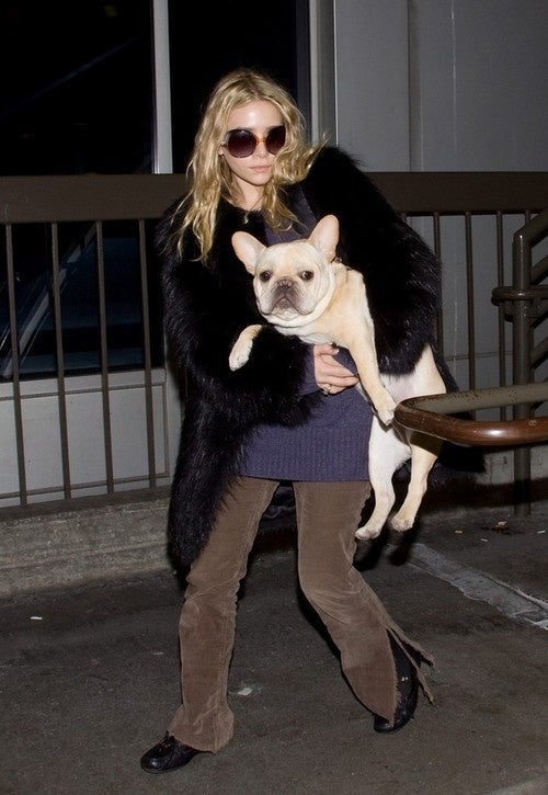 Ashley Olsen's Canine Companion Seems Concerned About ____________