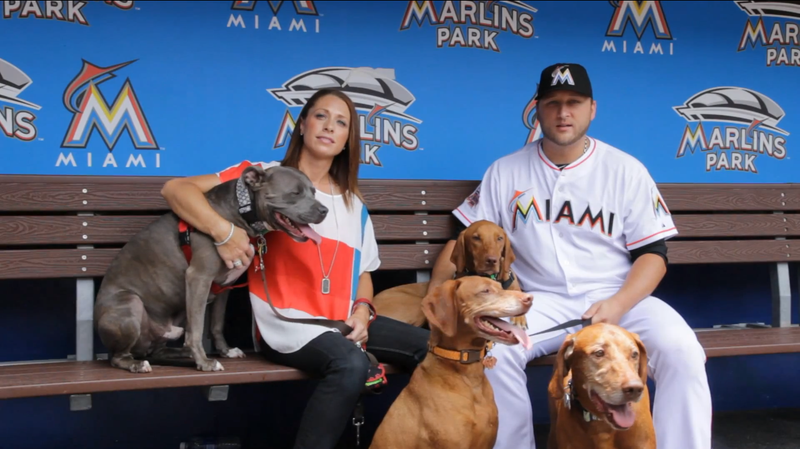 Mark Buehrle Will Leave His Family Behind Because His Dog Is Banned In Toronto