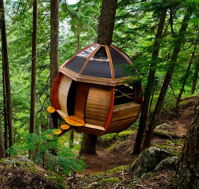 """An Ovular Treehouse Inspired By A Game Called """"Sport Sleeping"""""""