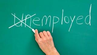 Jagvar: Employed!