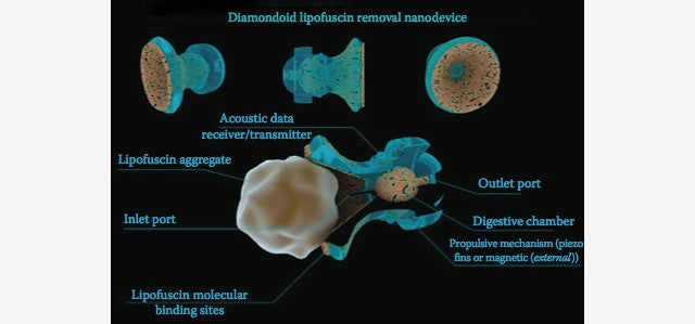 How Medical Nanotech Will Change Humanity Forever