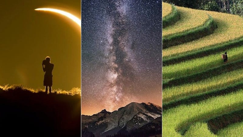 These Smithsonian Photo Contest Finalists Are Each Stunning in Totally Different Ways