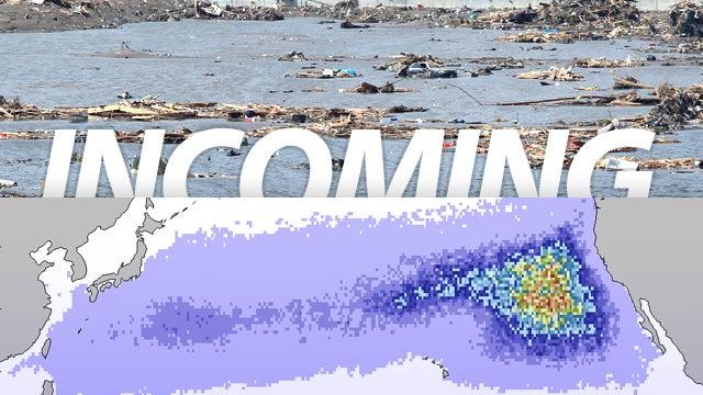 How Japan's Tsunami Massive Debris Plume Will Hit California and Hawaii