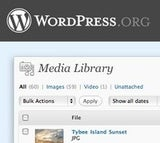 Best Blogging Platform: WordPress