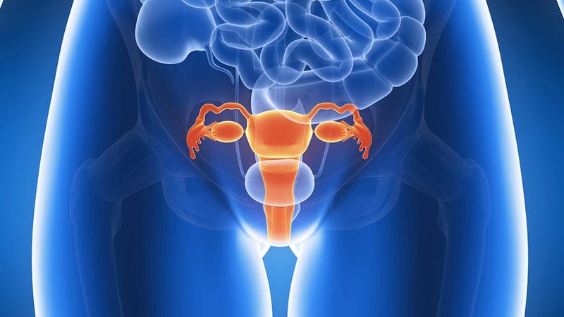 Common Gynecological Treatment Might Actually Spread Cancer. Oops.