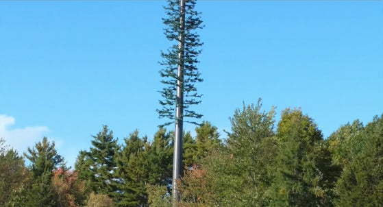 How To Hide a Cell Tower