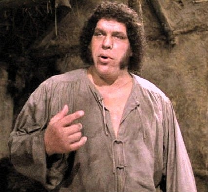 Did the Giant from Jack the Giant Slayer steal his look from Andre the Giant?