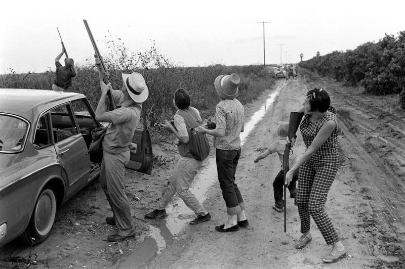 Guns Don't Kill Doves. Texans Kill Doves