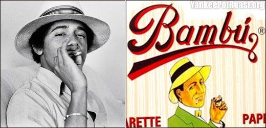 New Photos Highlight Illegal Obama/Bambu Resemblance