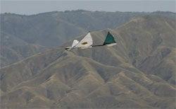 Unmanned Drones Over LA