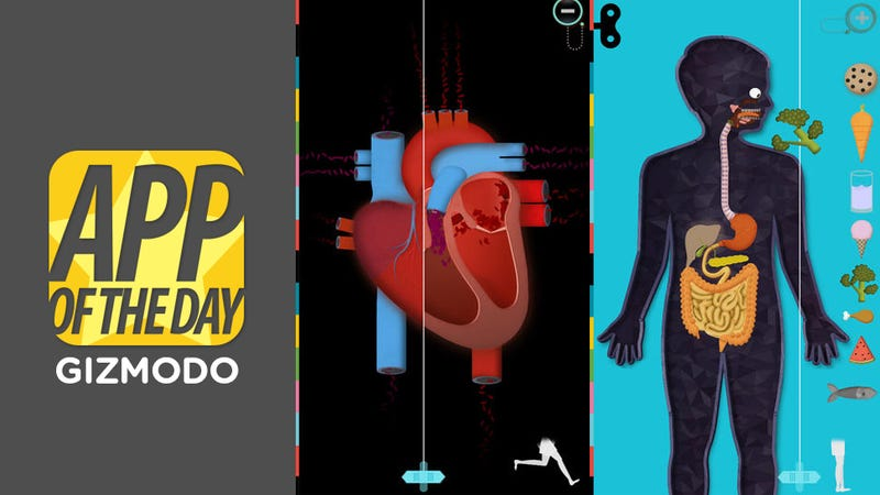 Human Body for iOS: Almost The Most Fun You'll Have Exploring Your Body