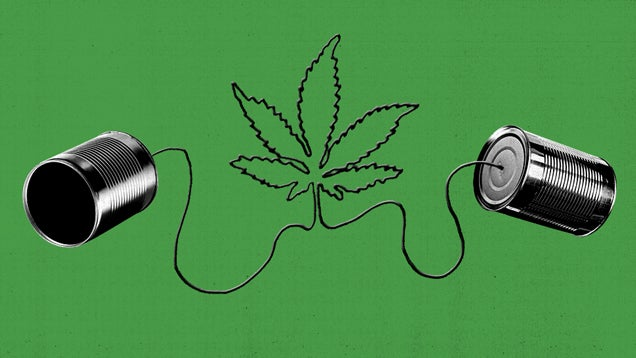 Getting High on PuffPuffChat, the Anonymous Chat Room For Stoners