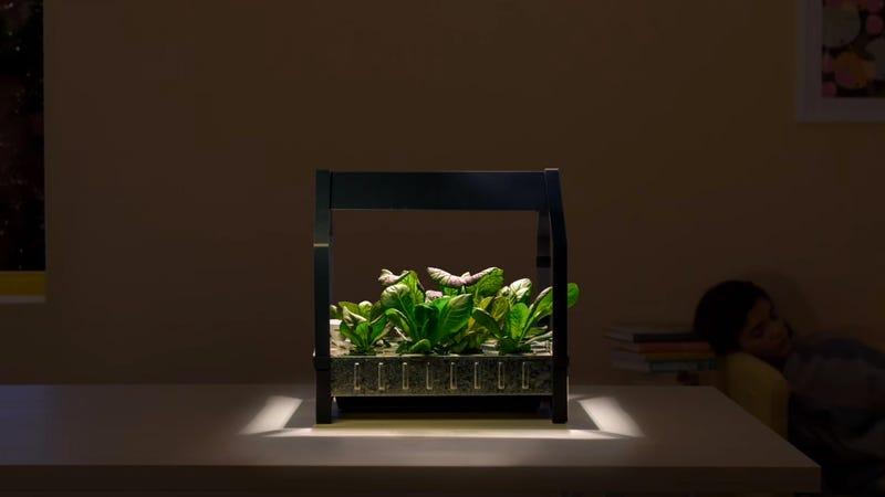 Ikea keeps getting weirder now sells hydroponic gardens for Ikea hydroponic indoor garden kit