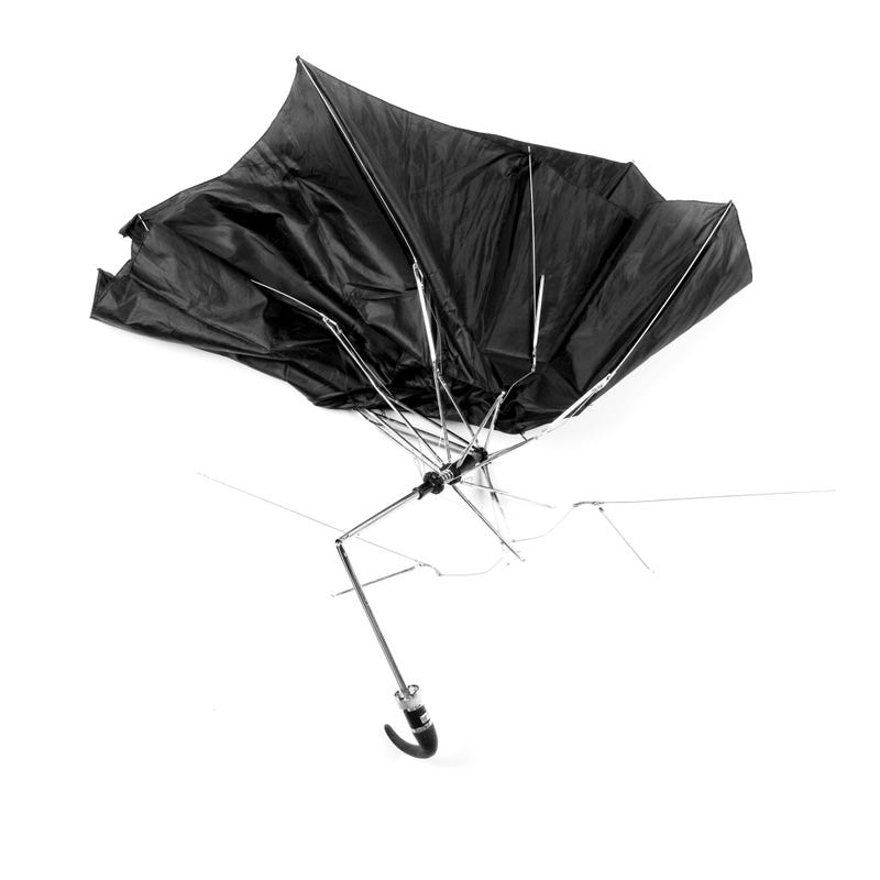 Mangled Umbrella Photos Put a Staple of NYC Life In the Spotlight