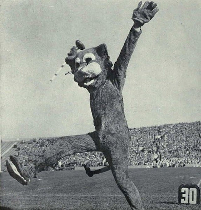 A Brief History Of Terrible Chicago Mascots