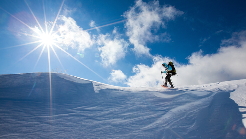 Tips and Tricks for Surviving Any Winter Adventure