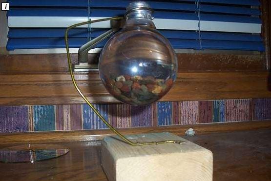 Build a Light Bulb Aquarium