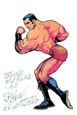 Holy Muscle Mystery, Flex Mentallo is finally back in print!