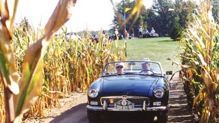 Sports Cars Race Through Corn (Maize) Maze