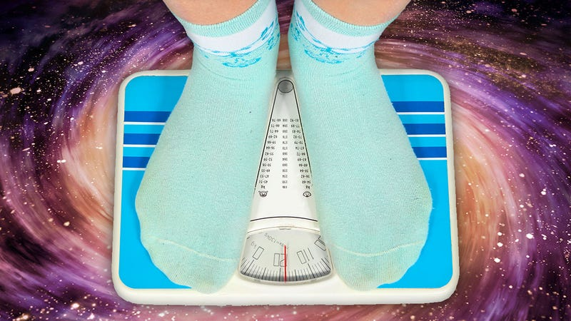 How Do I Accurately Track My Weight and Fat Loss?