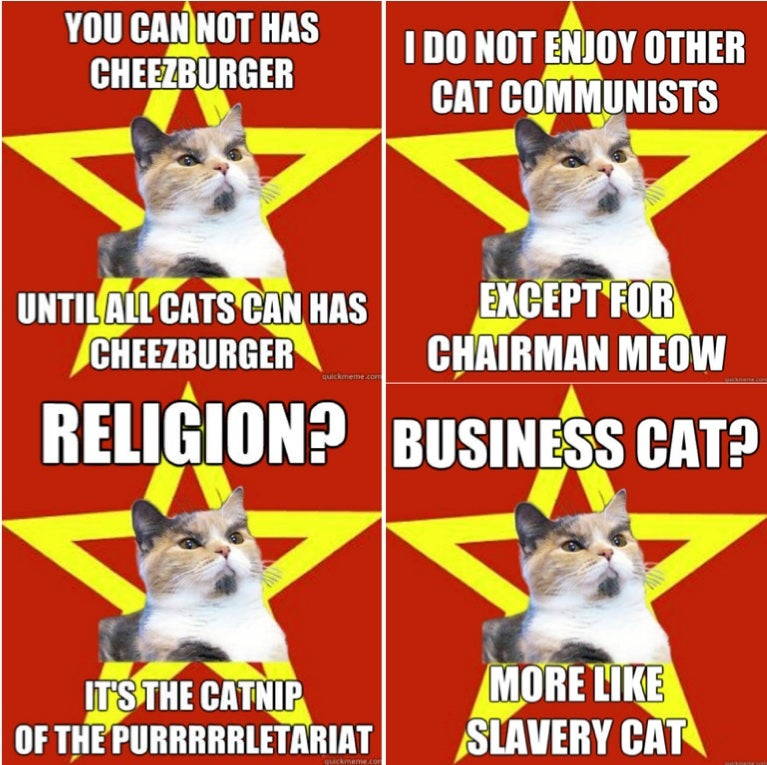 What is your favorite lolcat of all time?