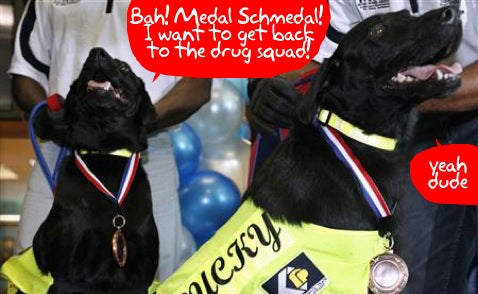 Malaysian Authorities Award Medals to Pirate DVD Sniffer Dogs