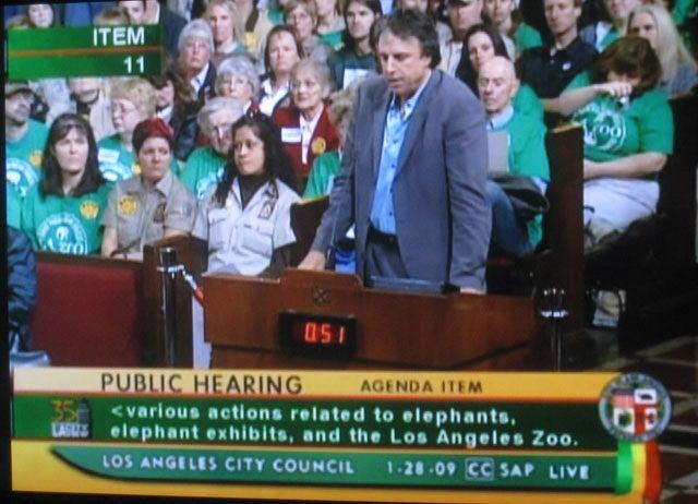 Random Elephant-Loving Celebrities Address City Council: A Defamer Gallery