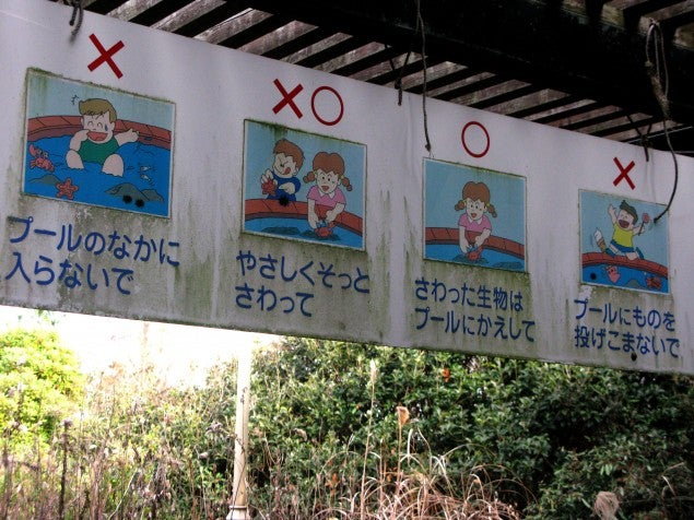 Photos of Japan's abandoned naval amusement park