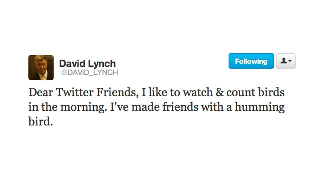 David Lynch Is Making Friends with Birds