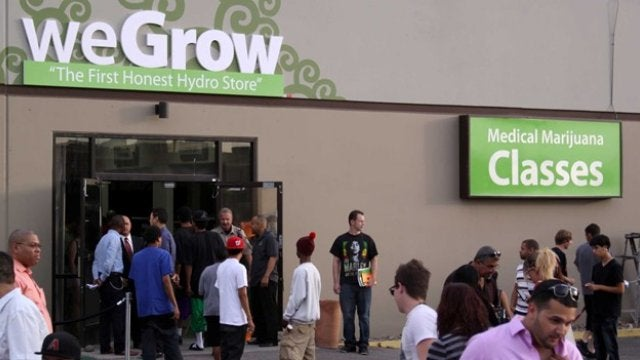 Pocket Predators, WeGrow Opens Shop, and That Time NIN Played Dance Party USA (NSFW)