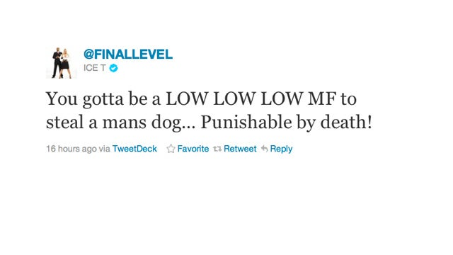 Ice T Thinks Stealing a Dog Merits a Walk Down the Green Mile