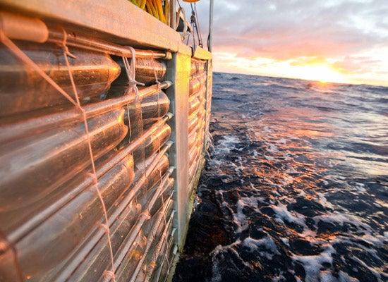 Plastiki, the Pop Bottle Ship, Completes Its 8,000 Mile Voyage