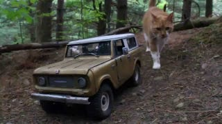 This International Scout The Size Of A Cat Is A True Artistic Triumph