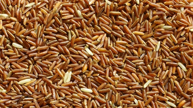 Researchers Squeeze Blood Proteins from Rice