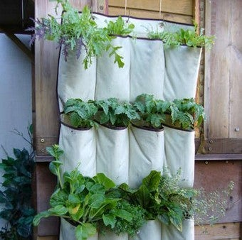 Turn a Shoe Organizer into a Vertical Herb Garden