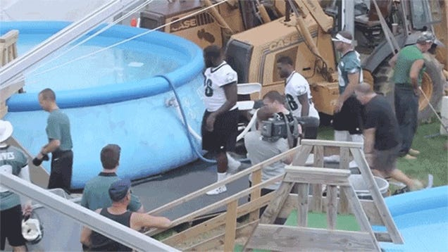 Just Chip Kelly Belly-Flopping Into A Big Pool Of Water