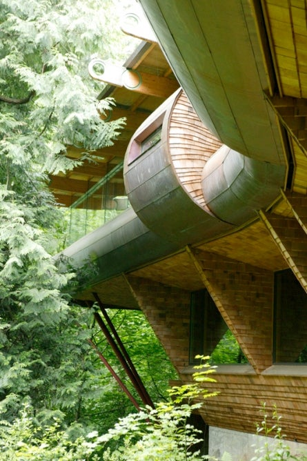 In The Future, Let's All Live In Treehouses Just Like The Wilkinson Residence Gallery