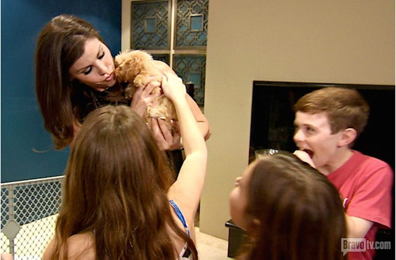 Heather Dubrow Supports Puppy Mills on Real Housewives of OC