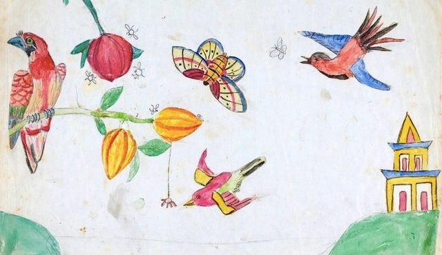 Darwin's Children Drew Pictures on the Origin of Species manuscript