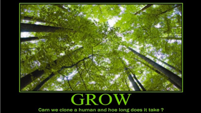 Today In Jose Canseco Tweets As Motivational Posters: Grow