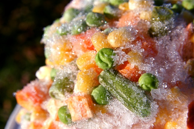 The Best (and Quickest) Ways to Thaw Frozen Food