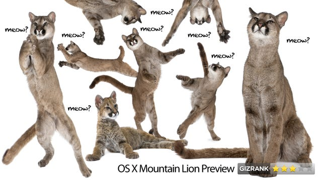 C Lion Review Mountain Lion Review What