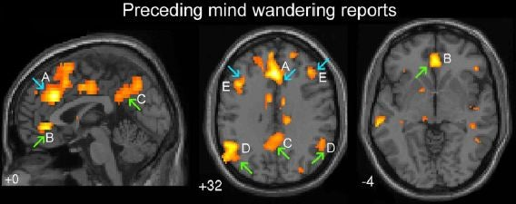 The Right Way and Wrong Way to Let Your Mind Wander