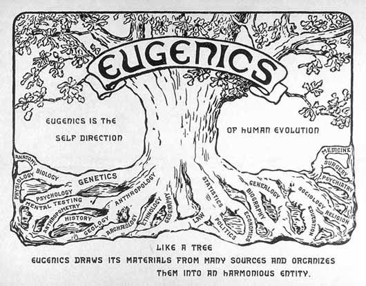 Pop Culture's 100-year Obsession With Eugenics