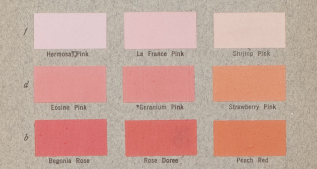 The Ornithologist Who Created Our Color Names