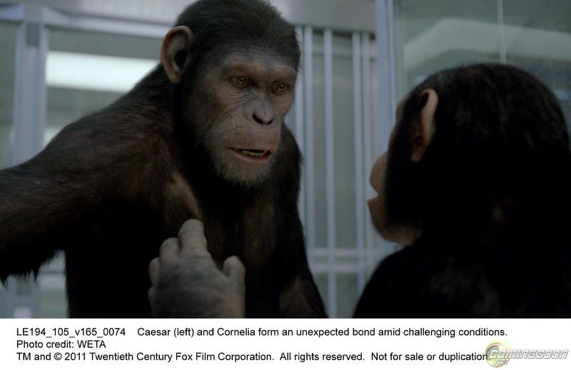 Rise of the Planet of the Apes Pictures